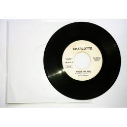 LP 45 GIRI CHARLOTTE/MAURO PILATO E MAX MONTI