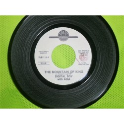 LP 45 GIRI DIGITAL BOY-THELMA HOUSTON